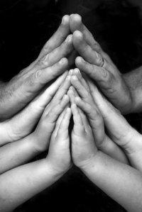Praying Hands 1