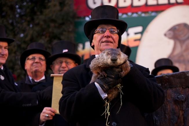 groundhog_day_punxsutawney_2013-2