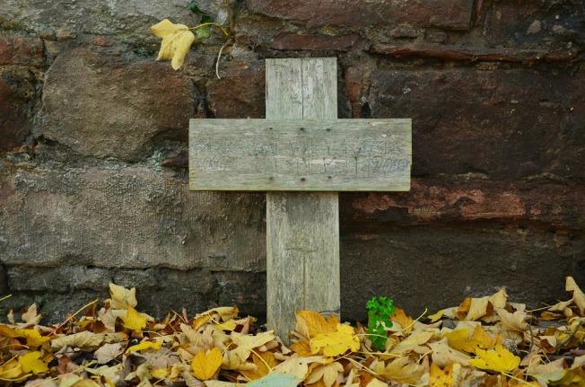 Cross Autumn